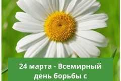 GGOpP9Sb624
